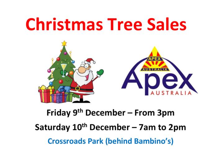 christmas-trees-poster-berowra-2016_orig