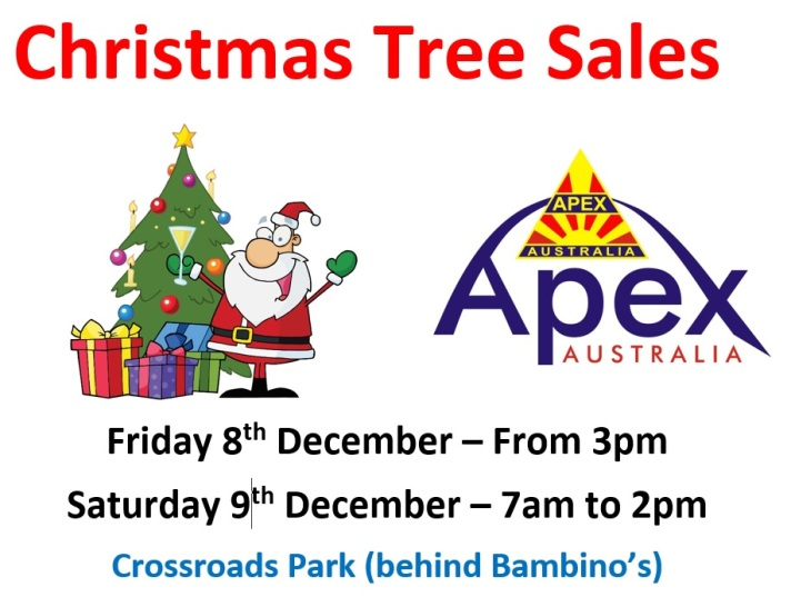 Christmas Trees poster - Berowra 2017