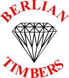 berlian logo